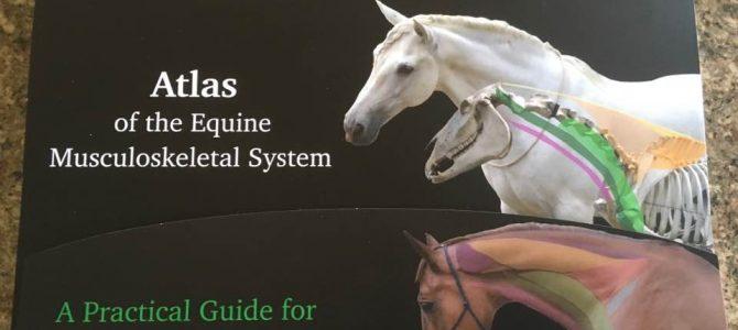 Ivana Ruddock-Lange – Atlas of the Equine Musculoskeletal System